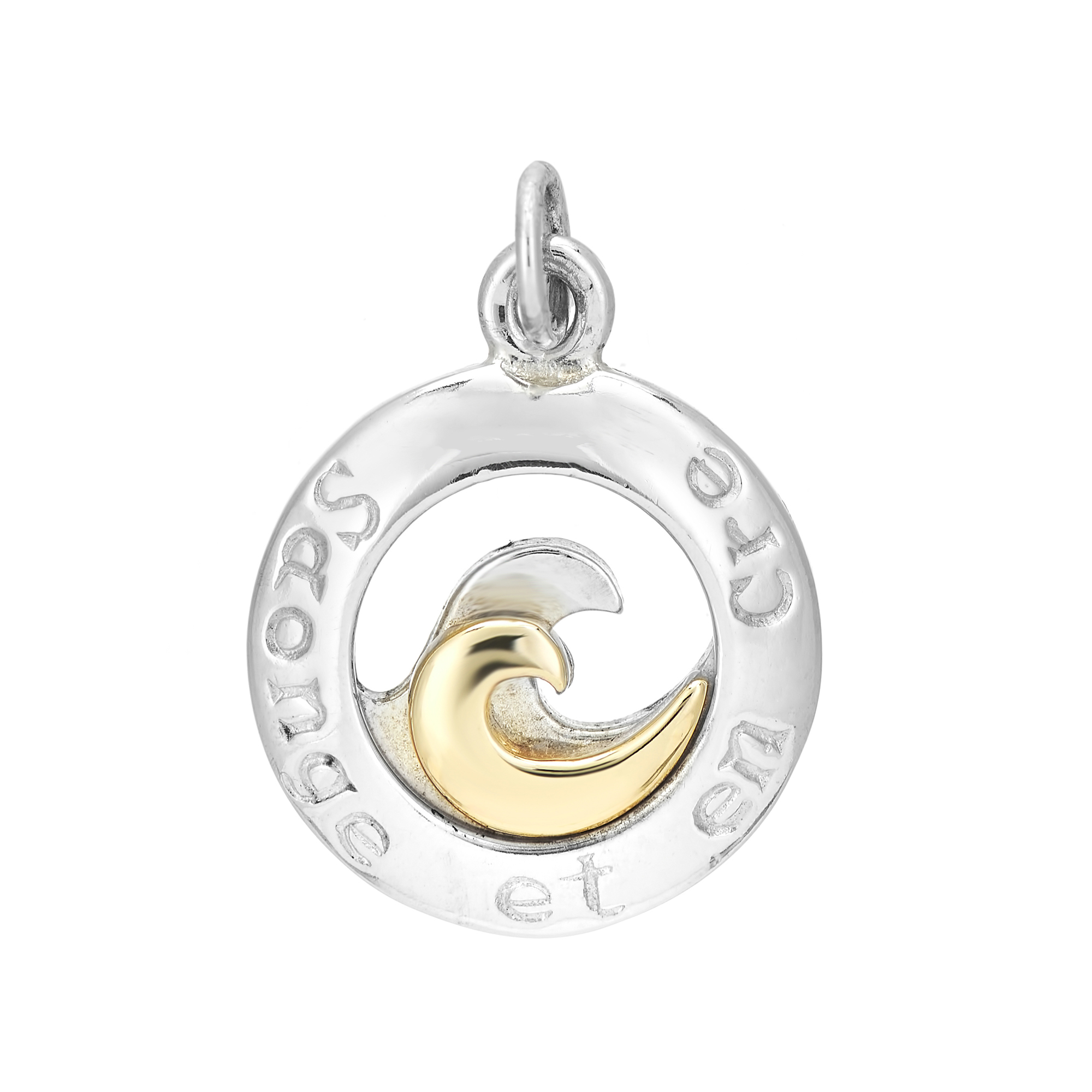 Sterling Silver and 9ct Yellow Gold Charm / Pendant (Dream and Believe )